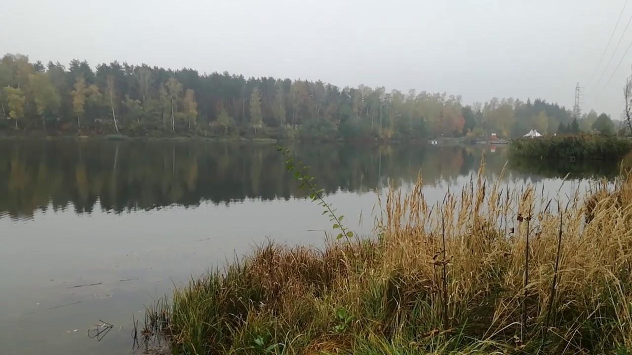 PZW Katowice
